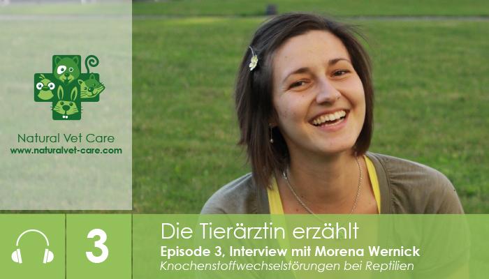 podcast_3_naturalvetcare_interview_morena_wernick