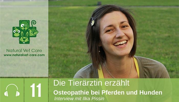 Episode 11_Osteopathie bei Pferden und Hunden mit Ilka Pissin